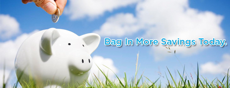 bag-in-more-savings-today